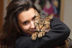 Treat Cat Allergies
